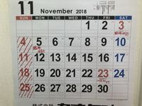 11月の診療日について!!!